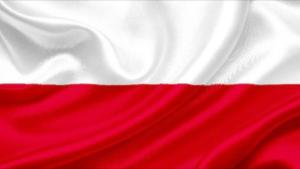 Polski Prawnik Adwokat Floryda